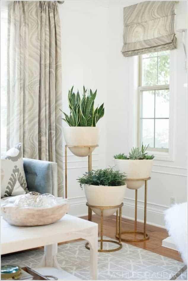 25 verschiedene Ausstellungsideen für Pflanzen in Innenräumen   – Plants