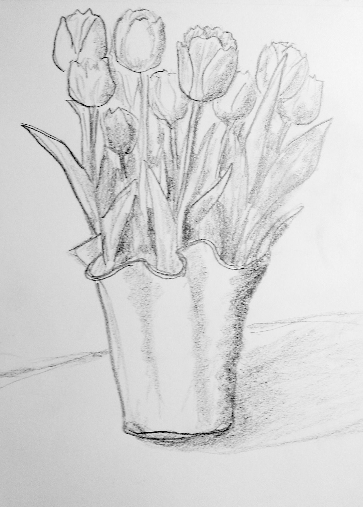 How To Draw A Realistic Tulip