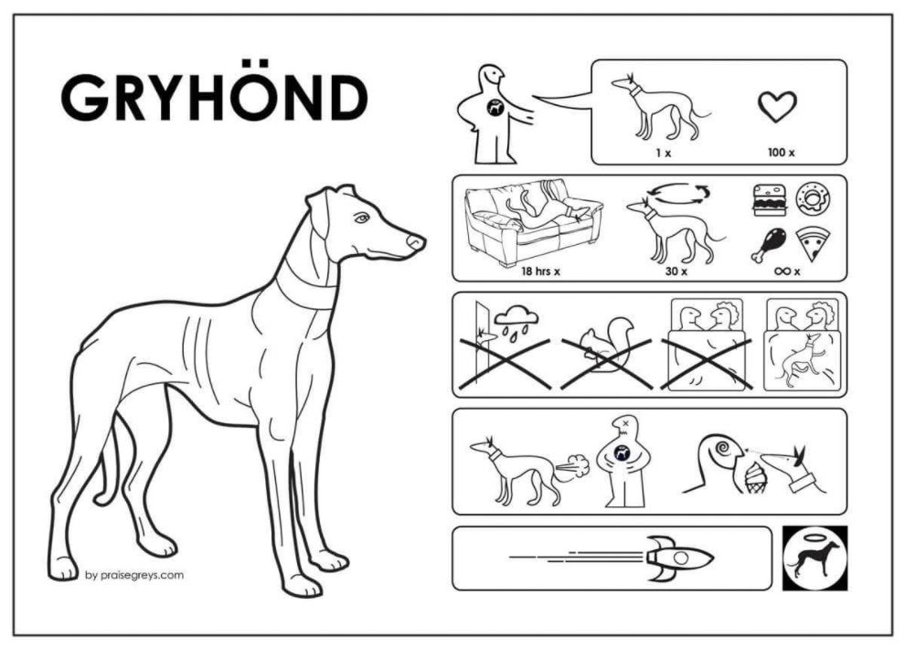 YOUR CAR WOULD ALSO LOOK LIKE THIS IF YOU OWNED A GREYHOUND Funny Sticker