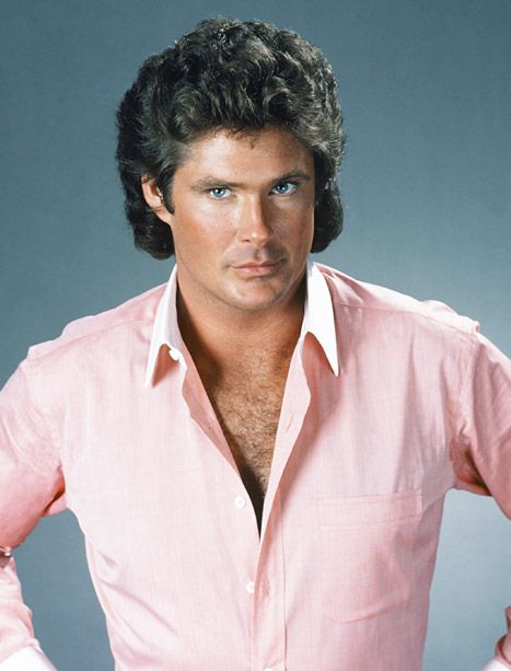 david hasselhoff – true survivor lyrics