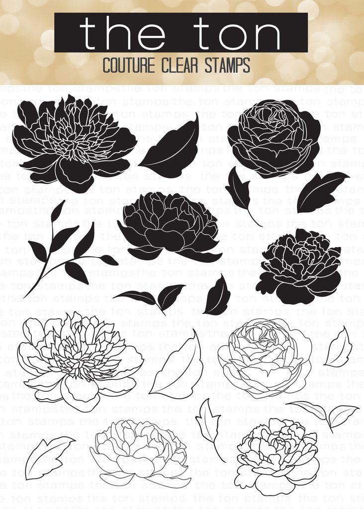 pfingstrose zeichnen blumen zeichnung, wild peonies   templates   pinterest   zeichnen, blumen und, Design ideen