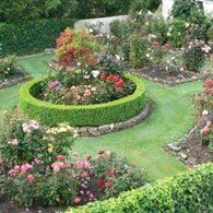 Formal rose garden like the layout but not with grass for Formal rose garden layout