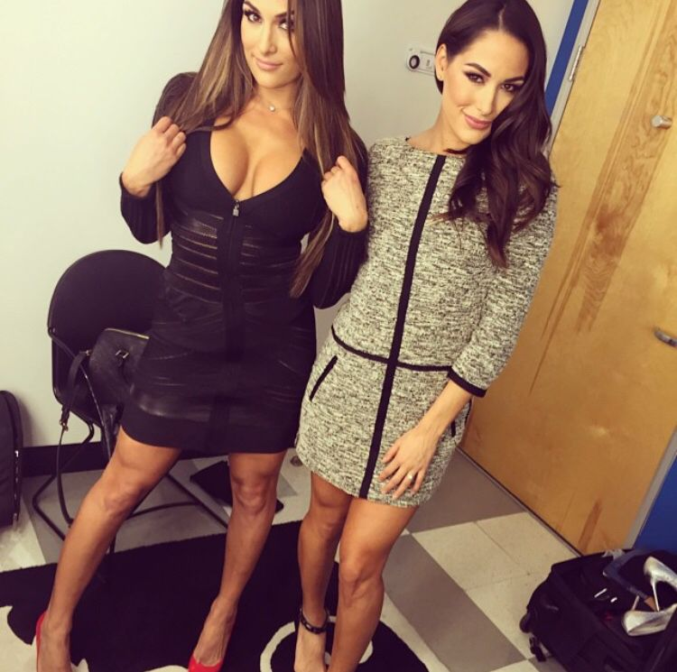 Brie & Nikki Bella Just Did a Totally Naked Twin Pregnancy