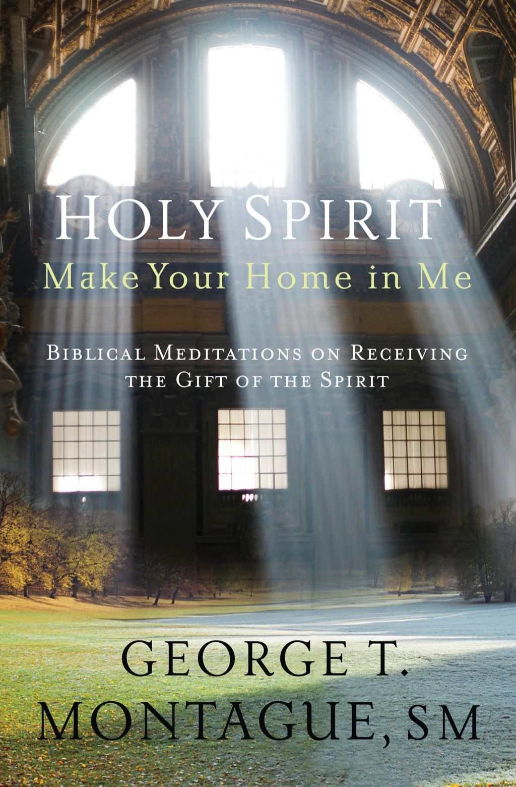 Holy Spirit Make Your Home in Me: Biblical Meditations on ...