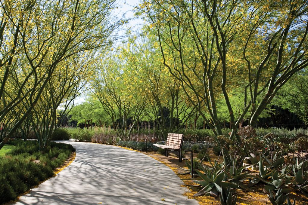 Sunnylands Center and Gardens by OJB
