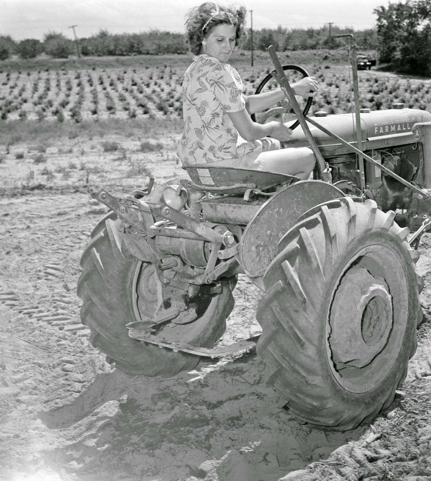 Ann Rosener Tractors, Old tractors, Vintage farm