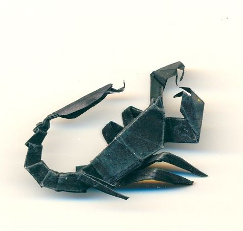 Origami Scorpion By PitushaZee On DeviantART