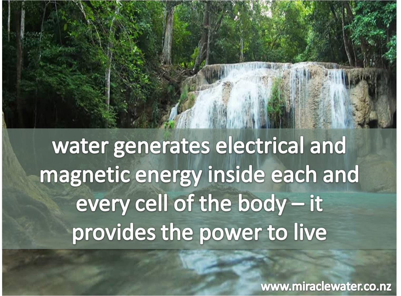 Www Miraclewater Co Nz Kangen Water Ionised Water Water
