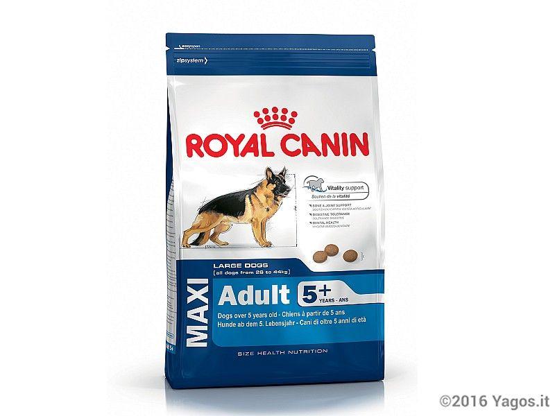 Alimento per cani maxi adult 5anni royal canin cibo per