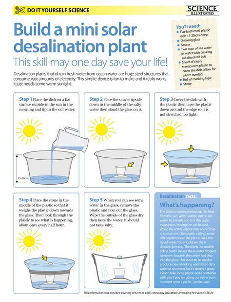 Make your own solar desalination plant | water drink idea