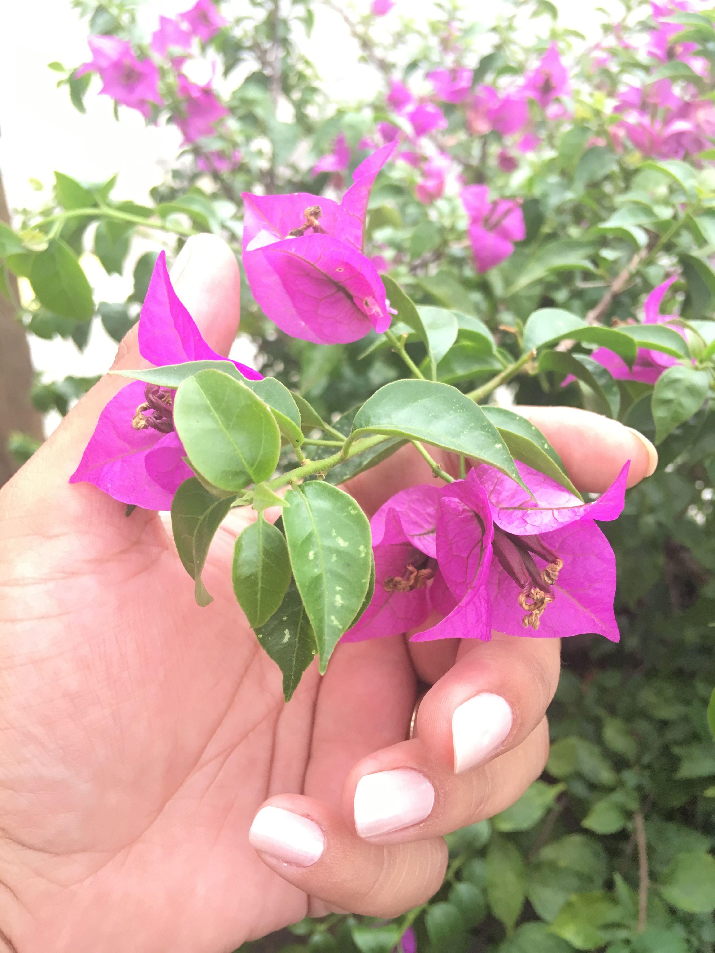 flor #tumblr #unha | selif | Pinterest