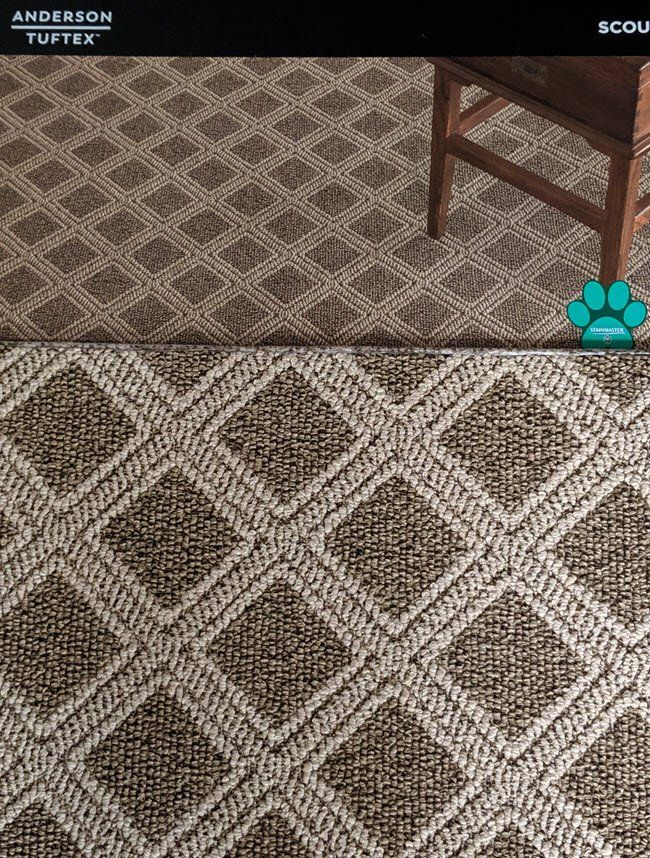 Try Tuftex Carpet for Style and Pet Protection Pet
