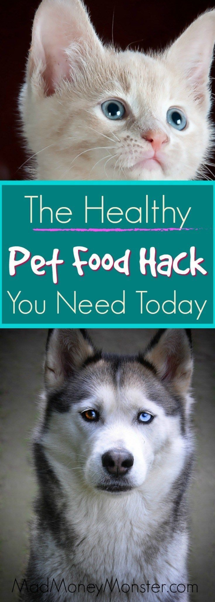 The Healthy Pet Food Hack You Need To Know About Pet