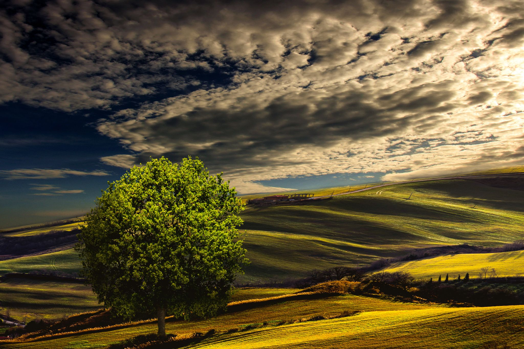 *** by stefano giacomini on 500px