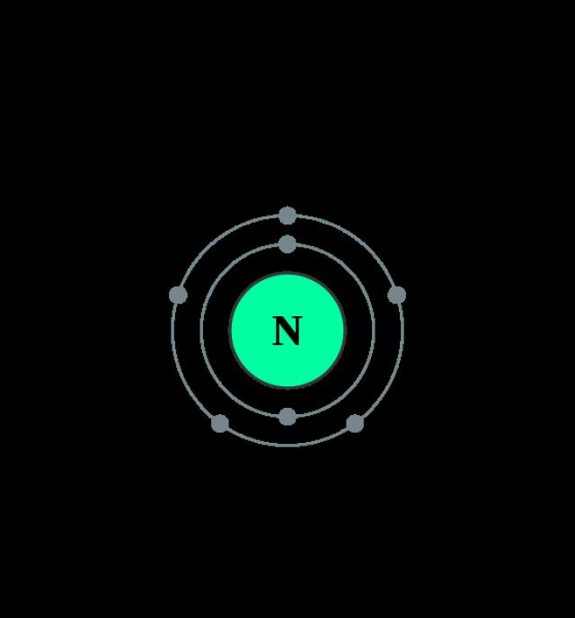 Atom Diagrams: Nitrogen Atom   Tattoos   Pinterest   Snäckor