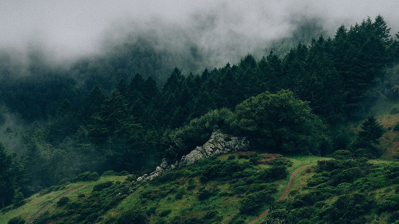 Na25 Nature Mountain Green Laptop Wallpaper Desktop Wallpapers