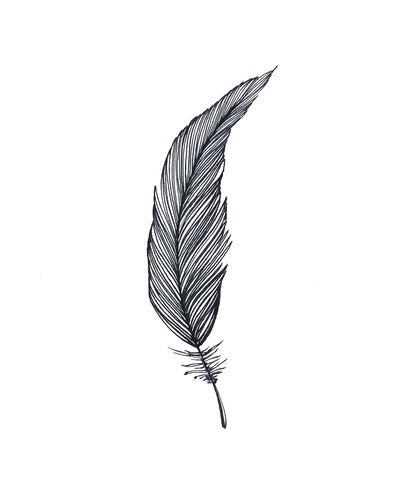 One Feather - Black & White Art Print