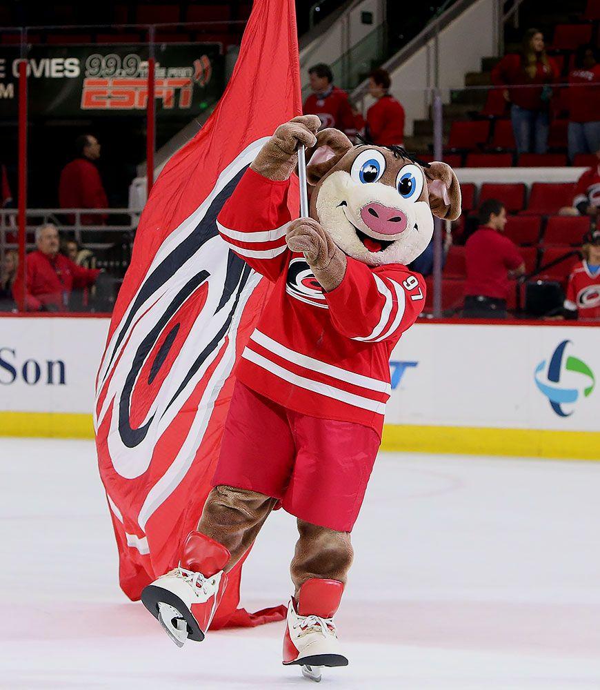 Ranking The Nhl S Mascots Mascots Carolina Hurricanes Bulldog