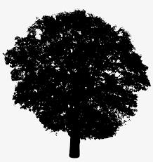 Shrub Bush Tree Png Silhouette Images Silhouette Images Silhouette Vector Tree Tops