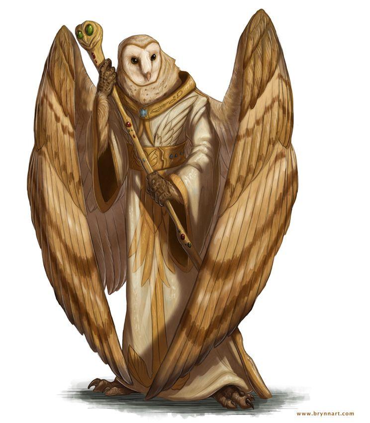 Owl Aaracockra