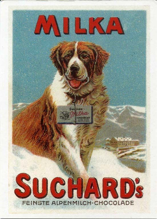 home is where your ST BERNARD DOG is a4 gloss Print UNFRAMED picture 3