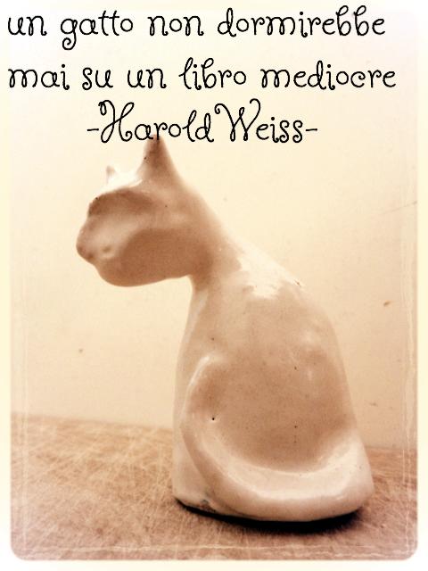 sbizarritevi con tutti i gatti del lab Liù, visitate http://www.etsy.com/it/shop/LabLiu