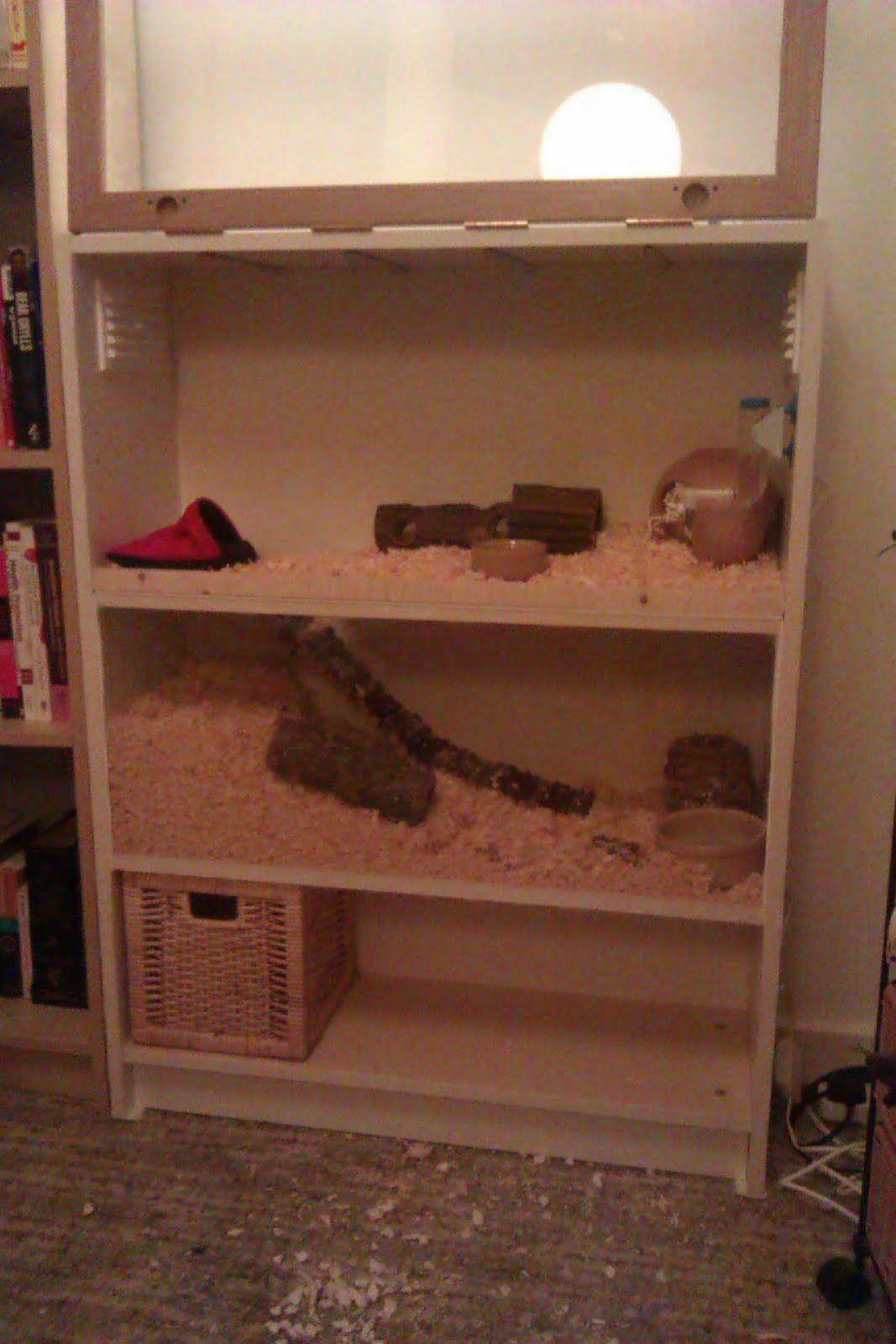 make your own two storey hamster apartment hamster stuff pinterest hamster cages guinea. Black Bedroom Furniture Sets. Home Design Ideas