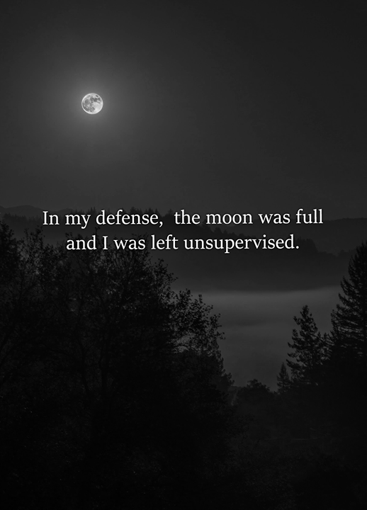 I Should Never Be Left Unsupervised On A Full Moon Full Moon Quotes Country Girl Quotes Full Moon Quotes Feelings