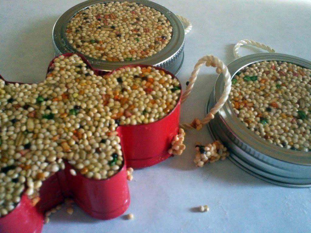 Bird seed cake recipe gelatin winter crafts for kids