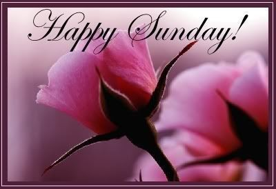 Happy Sunday  sunday sunday quotes happy sunday sunday images