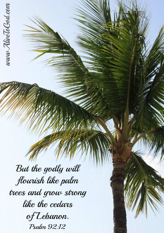 Pin By Alive To God On Faith Inspiration Bible Verses God