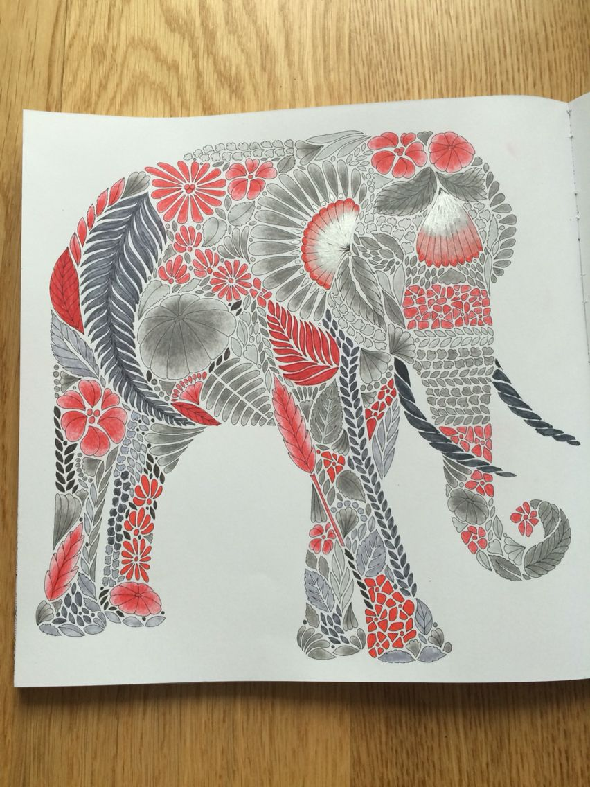 Color me draw me animal kingdom book - Tropical Wonderland Millie Marotta By Me Adult Coloringcoloring Booksjungle Animalsanimal Kingdombollywoodelephantwonderlanddrawingcoloring