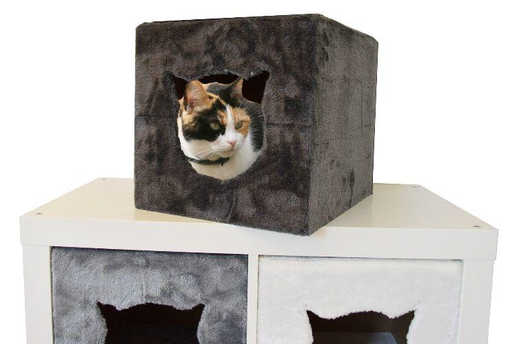Kat Huis Voor Ikea Kallax Kast Cats Kallax Kat Krabpaal
