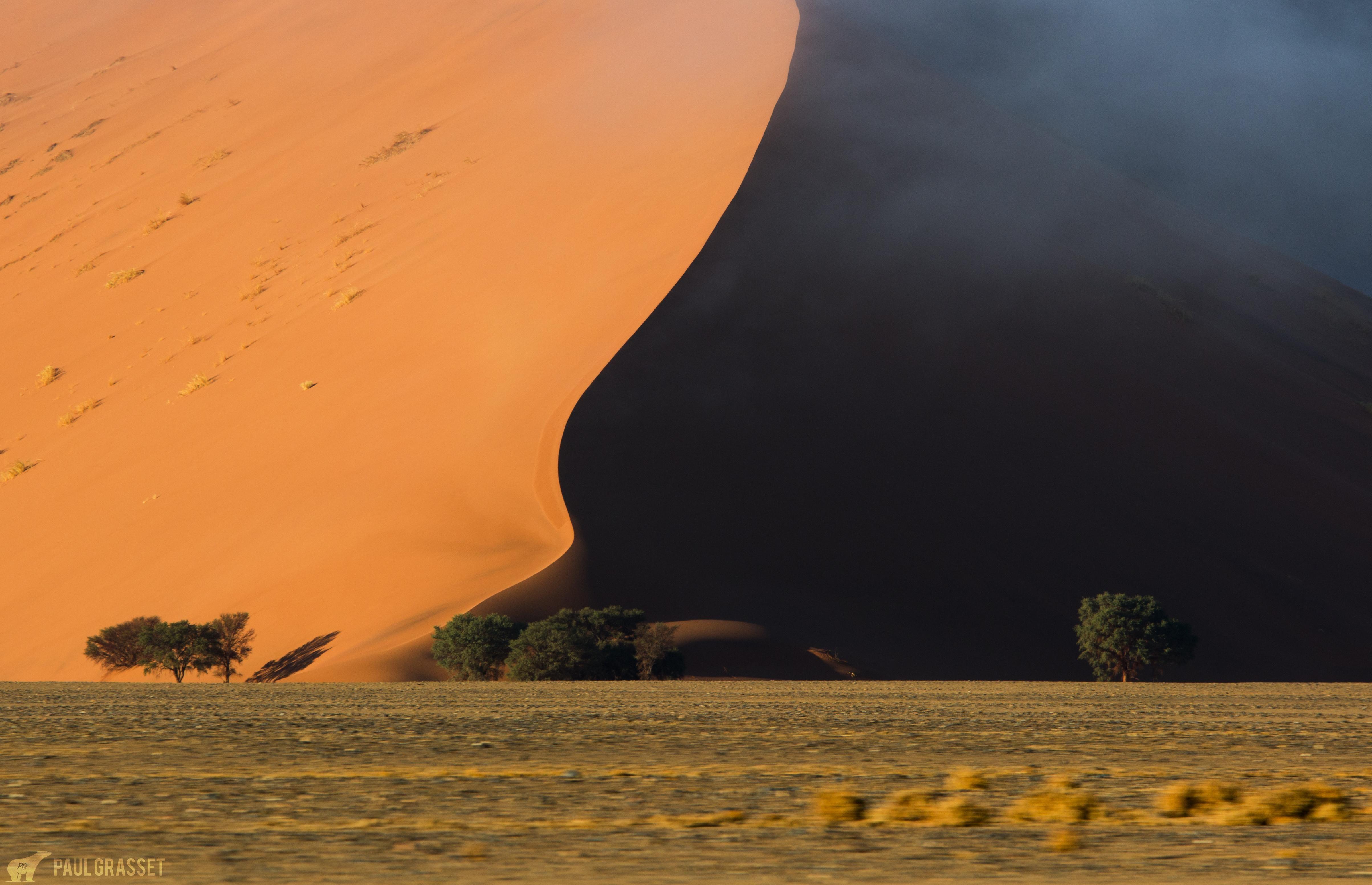 Sunrise over the highest sand dunes in the world Sossusvlei Namibia by Paul Grasset [OC] [4814x3106]
