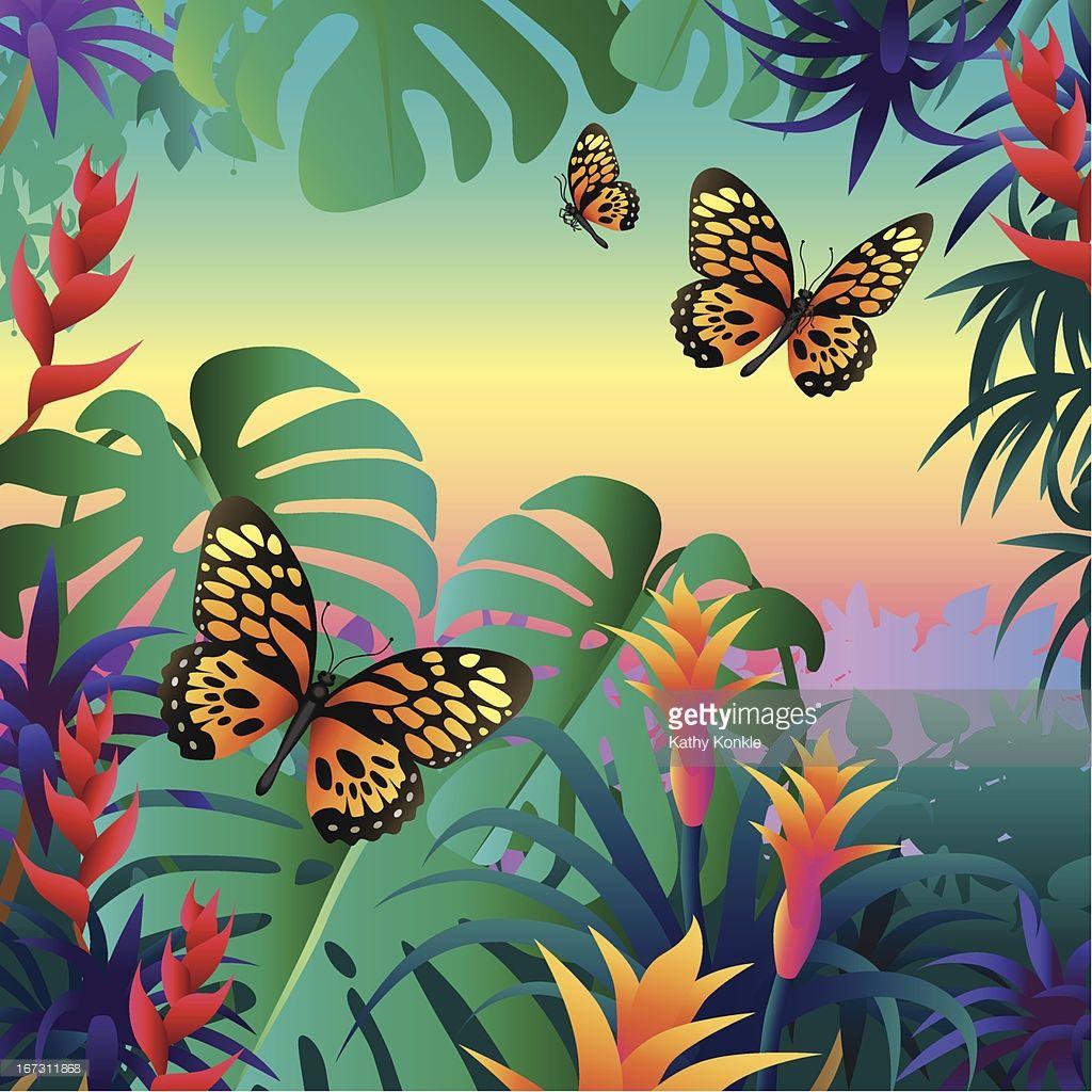 Vectorkunst : rainforest butterflies