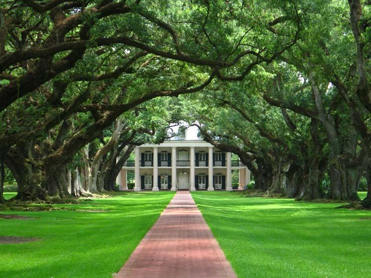 Oak Alley Plantation – Come and See One of the Few Surviving Sugar Plantations - http://thebesttravelplaces.com/oak-alley-plantation/