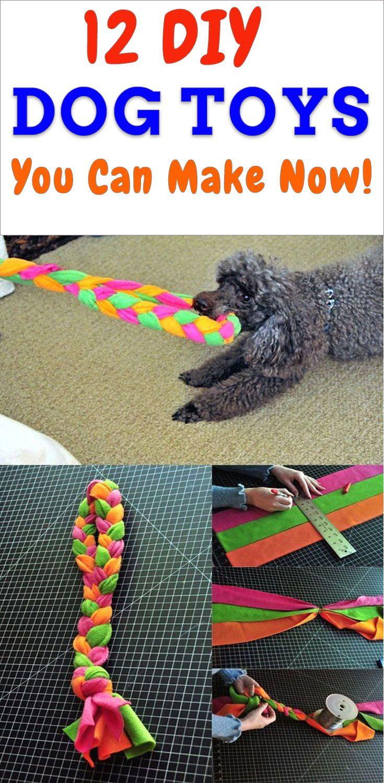 12 Easy Diy Dog Toys You Can Make Now Diy Dog Toys Dog Toys