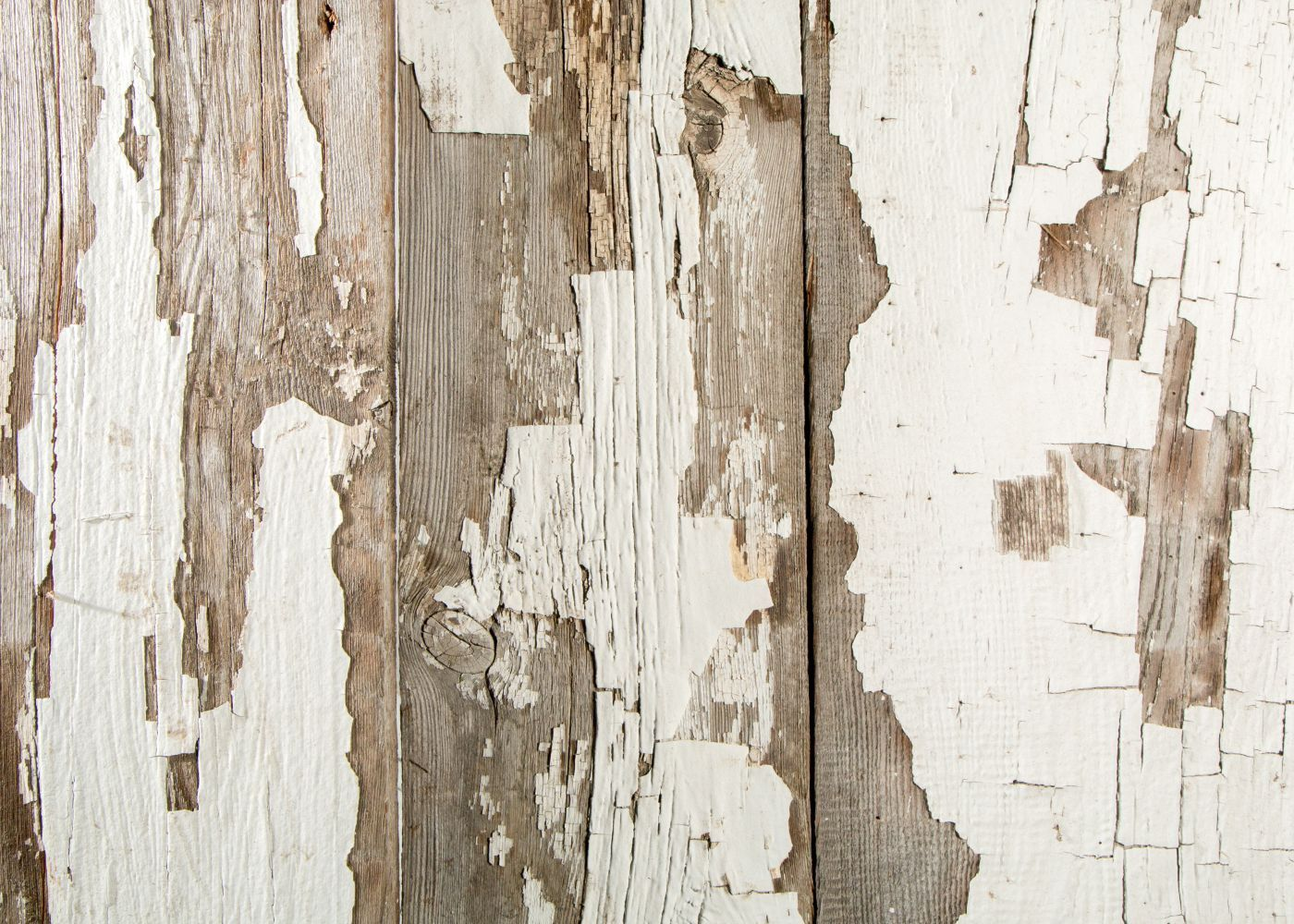 Bardage vieux bois, blanc d\'origine, issu de vieilles granges du ...