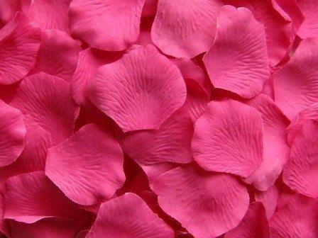 1000 Silk Rose Petals, Hot Pink Microfiber, Value Pack, wedding decorations, petals for wedding aisle runners, flower girl toss on Etsy, $30.00