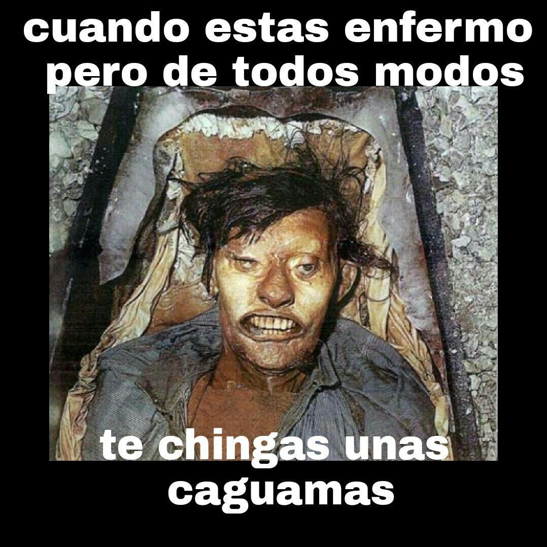 4c71903ec9303658219a47beeca4a374 pin by alberto arellano on memes pinterest memes,Alberto Memes