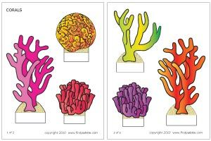 Corals Printable Templates Coloring Pages Firstpalette Com