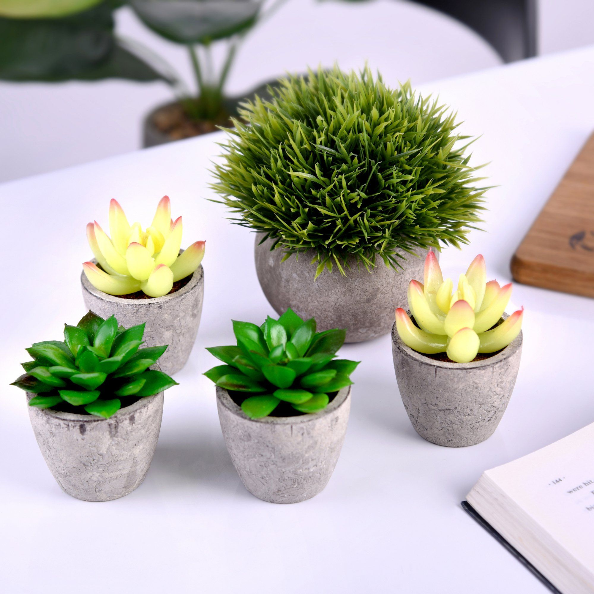 Artificial Succulent Plants Potted Fake Succulents Set Of 5 Home Bath Office Decor Gift Faux Potted Artificial Succulent Plants Fake Succulents Succulents