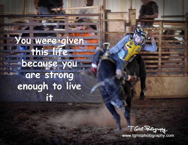 Funny Bull Riding Quotes: #Photography #Quote #Bullriding