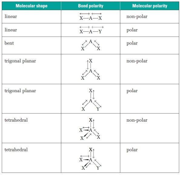 shape of compounds