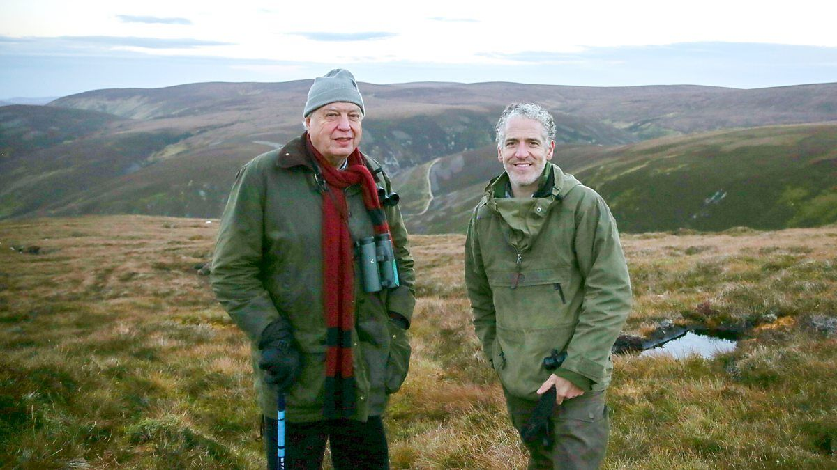 Gordon and John are in the beautiful Cairngorms in search of the elusive Scottish wildcat.
