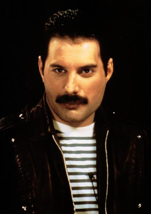 Freddie Queen Freddie Mercury Freddie Mercury Freddie Mercury Interview