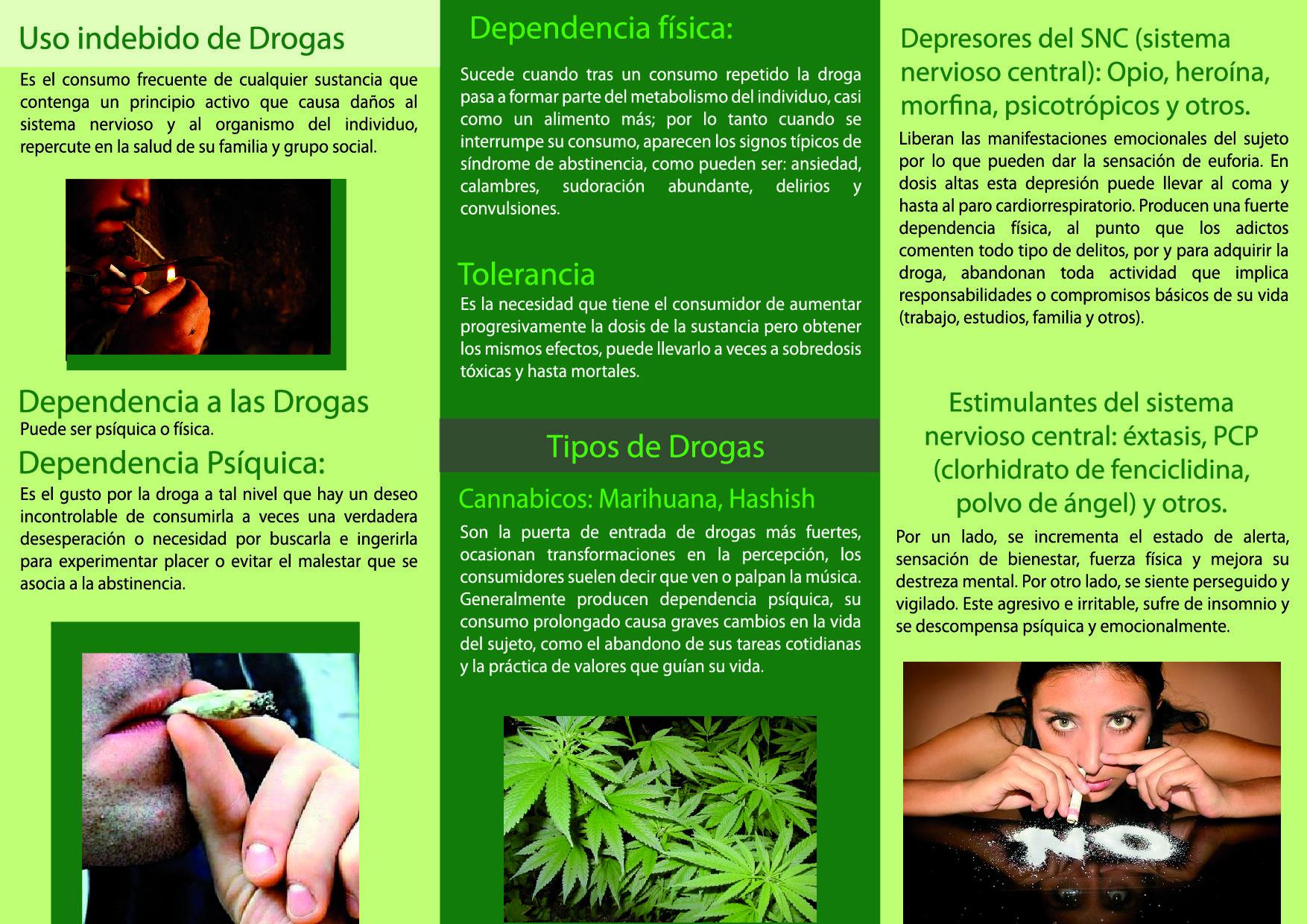 Tr ptico riesgos de la droga cliente ministerio de salud for Interior y exterior en ingles