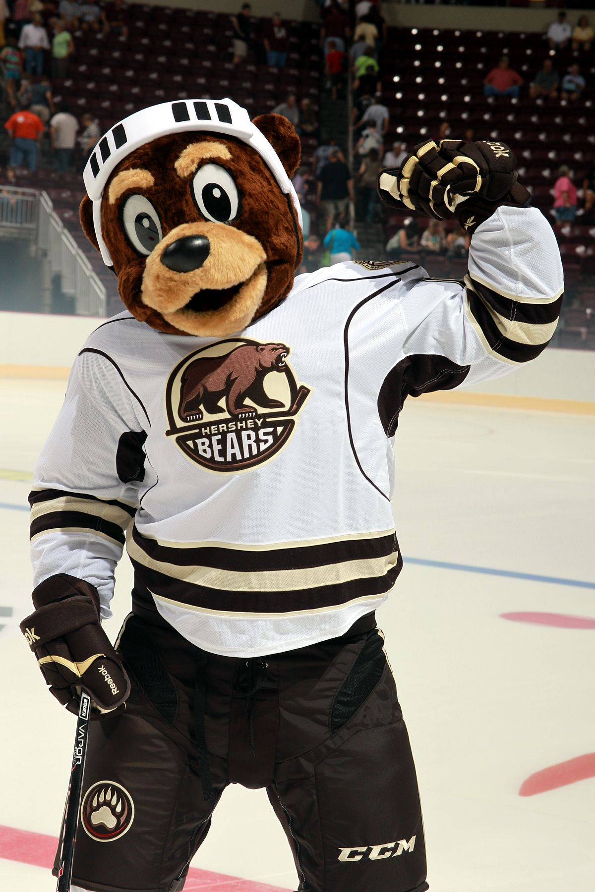 Hershey Bears Mascot Coco Showing Off His Muscles At The Logo