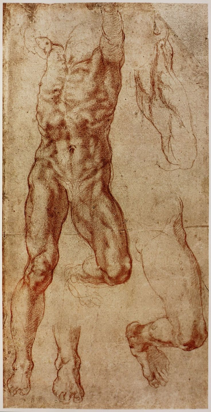 Michelangelo Drawings on Pinterest | Michelangelo, Study and Drawing ...