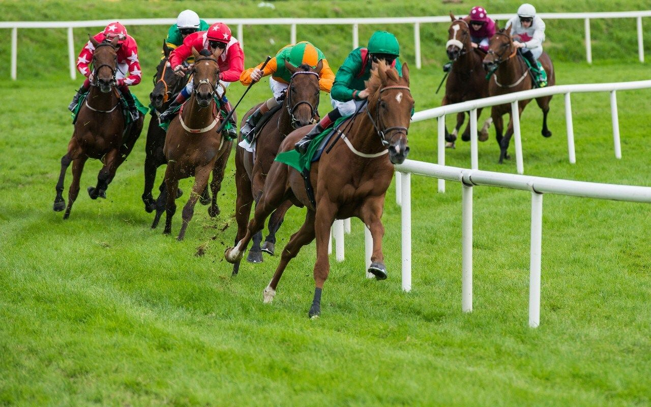 horse betting tips for beginners